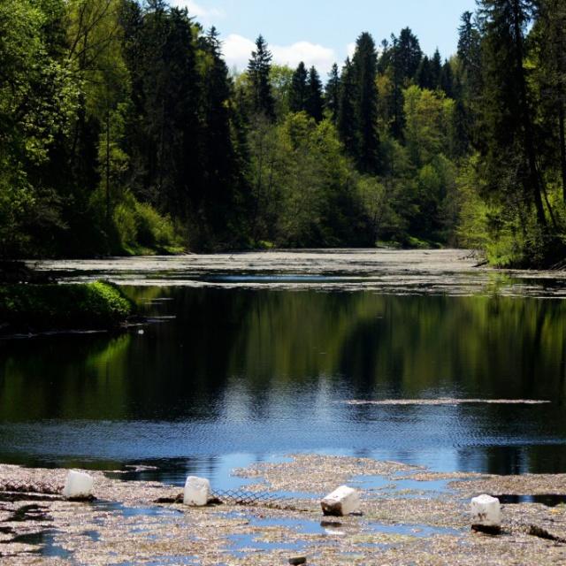 осень это радоновое озеро в лопухинке фото уже